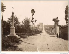 Quando Sissi andò a Roma Appian Way, Roads And Streets, Roman Roads, Grisaille, Trieste, Ancient Romans, Old Photos, Paris, History