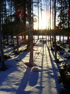 from the desk: Finland in Spring
