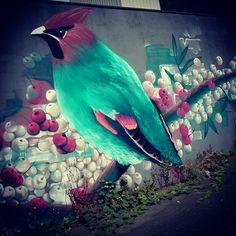 Street art up Anley duck