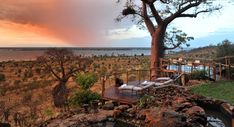 Experience incredible game drives when you travel to Ngoma Safari Lodge in Botswana. This Chobe National Park luxury lodge is nestled on the banks of the Chobe River. Chobe National Park, National Parks, Desert Places, Victoria Falls, African Safari, Beautiful Places To Visit, Africa Travel, Lodges, Vacation Spots