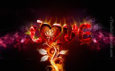 Download Love Imgaes