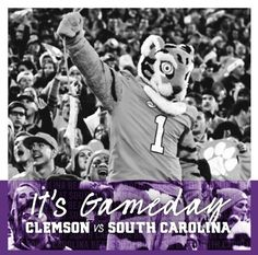 Get up Tigers! It's Gameday! Beat USC 🏈 #allin #beatUSC #clemsonfootball Clemson Football, Get Up, South Carolina, Tigers, Beats, Stand Up, Get Back Up, Big Cats