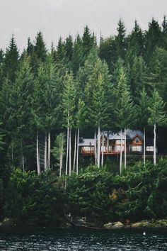 Lake/Mountain Home