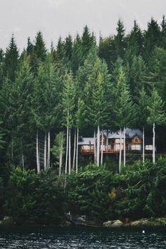 Lake/Mountain Home