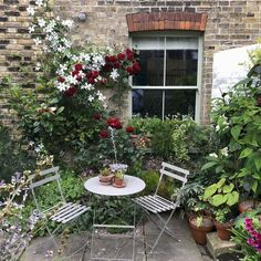 Stunning Front Yard Cottage Garden Inspiration Ideas - Stunning Front Yard Cottage Garden Inspiration Ideas - - Smuk baggård 85 stunning small cottage garden ideas for backyard landscaping Window to livingroom - Chambre d'hotes Bargemon Small Cottage Garden Ideas, Unique Garden, Small Garden Design, Garden Cottage, Diy Garden, Garden Care, Garden Types, Court Yard Garden Ideas, Cosy Garden Ideas