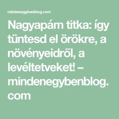 Nagyapám titka: így tüntesd el örökre, a növényeidről, a levéltetveket! – mindenegybenblog.com Helpful Hints, Math Equations, Gardening, Gardens, Bible, Vegetables Garden, Useful Tips, Garten, Lawn And Garden