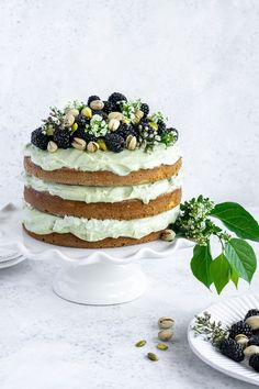 This double pistachio layer cake is made of 3 pistachio cake layers and delicious pistachio whipped cream. If you're a pistachio lover then this cake is for you! Pistachio Gelato, Pistachio Cream, Pistachio Cake, Italian Desserts, Easy Desserts, Delicious Desserts, Italian Recipes, Mini Cakes, Cupcake Cakes