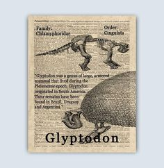 Extinct Glyptodon Poster  Prehistoric Animal Extinct Extinct Animals, Prehistoric Animals, Art For Kids, Art Children, Octopus Print, Kids Poster, Boys Room Decor, Pigment Ink, Gifts For Boys