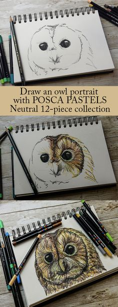 We want to give you the best tools to expand your artistic practice, which is why we've launched our carefully curated POSCA PENCIL AND PASTEL sets. Here we show you how two of the sets, POSCA PASTEL Neutral and POSCA PENCIL Luxe can enable you to create amazing tonal drawings with two easy to follow avian-themed drawing projects.