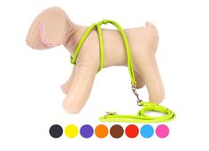 Dog Harness Rolled Leather Small Puppy * Quickly view this special dog product, click the image : Stuff for dog
