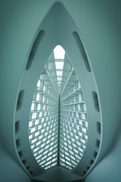 Inside the MAM by Calatrava