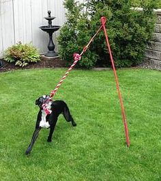 Dog Leash Holder|Key Hanger|Dog Leash And Key Holder|Funny Pet Decor
