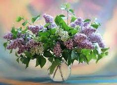 Lilacs - Google'da Ara