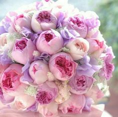 New wedding flowers pink peonies colour 69 Ideas Peony Colors, Purple Peonies, Pink Purple, Peony Bouquet Wedding, Purple Wedding Flowers, Pink Flowers, Purple Bouquets, Flower Bouquets, Bridal Bouquets