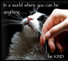In a world where you can be anything . . . be KIND.