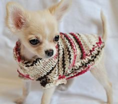 so adorable! (sweater for sale on etsy)