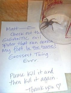 This is what I am going to do the next time I come across a spider. Lol. I can't kill them, not sure why. Lol.