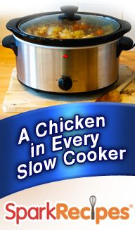 Slow cooker chicken recipes - perfect for the busy mom or non-cook!  Just throw the ingredients in the pot & let the cooker do the rest! Yum!