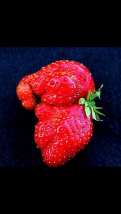 Wendy thinks this elephant shaped strawberry that she has grown is too cute to eat @Ruby Ruth Dolls #WinWendy
