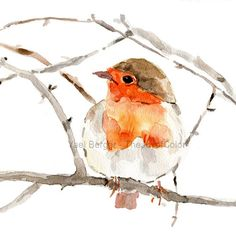 Art Print , Robin on a branch, Print of watercolor, Wild life print, Robin watercolor, Birds art, nursery decor, Woodland holiday