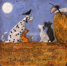 "Sam  Toft - ""Blackbird Singalong in the Dead of Night"""