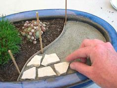 Create Your Very Own Miniature Garden Patio!