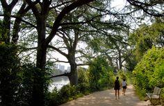 The Hike and Bike Trail around Lady Bird Lake, Austin
