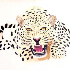 Cheetah Acrylic on Canvas