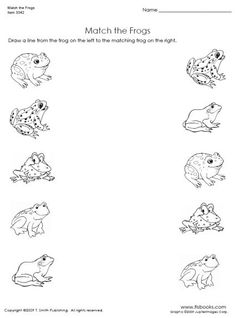 Matching Worksheets For Preschoolers - My list of the most beautiful animals Frog Activities, Preschool Learning, Kindergarten Worksheets, Worksheets For Kids, Matching Worksheets, Reptiles Preschool, Maternelle Grande Section, Frog Theme, Pond Life