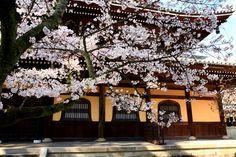 Nanzen-Ji ● 南禅寺 京都