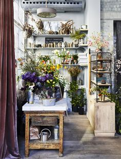 Roman and Williams Guild (La Dolce Vita) Art Studio Design, Art Studio At Home, Design Blog, Home Art, Design Art, Flower Shop Interiors, Roman And Williams, Flower Studio, Furniture Sale
