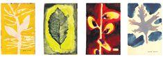 Leanna Sharpton, Native Trees of Canada Art And Illustration, Illustrations, Art Google, Ny Times, Nativity, Watercolor, Drawings, Prints, Painting