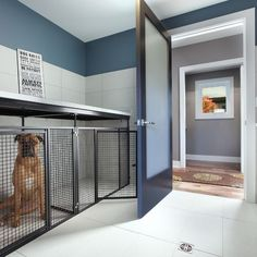 Built in dog kennel inside workshop/garage. | Home for the boys ...