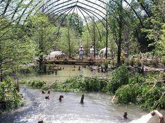 """Aviary Cage built for the 1904 World's Fair! -  Saint Louis Zoo -- ♫""""Meet me in St. Louis, Louis, meet me at the fair...""""♪"""