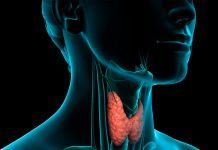 9 Alimentos Prohibidos Si Padeces Hipotiroidismo