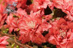 ! Joy Crafts: Lovely Flowers ....
