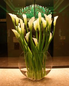 2 Cool Flowers - Hotel Lobby Floral Arrangements, Call 832-598-4373 for pricing (http://stores.2coolflowers.com/hotel-lobby-floral-arrangements-1/)