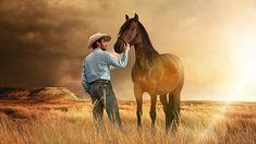 KINO: Alles Glück der Erde liegt auf dem Rücken der Pferde!  Nach einem beinahe tödlichen Rodeo-Unfall muss sich der junge Cowboy Brady Blackburn mit der Tatsache abfinden, dass er nie wieder reiten kann, und stürzt in eine existentielle Identitätskrise: Immerhin definiert ihn nicht nur seine Umwelt, sondern vor allem auch er selbst als Sioux-Nachkomme sich vornehmlich über seine Arbeit mit Pferden. Schwer wiegen der abschätzige Blick seines Vaters, der Abschied von seinen enttäuschten Fans…