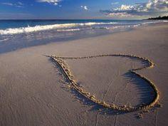 Heart tropical romance