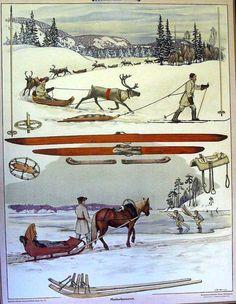 The old school's educational board - Maakulkuneuvoja - land vehicles - Finnish horse