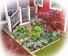 fence corner  This 6x6-ft. garden bed is aglow with white, pink, and purple blooms.      A) Japanese maple (Acer palmatum 'Atropurpureum'), Zones 5–8    B) Hydrangea 'Forever and Ever', Zones 5–9     C) Nandina 'Firepower', Zones 6–11    D) Hosta 'Francee', Zones 3–9    E) Brunnera, Zones 3–7    F) Japanese painted fern (Athyrium niponicum 'Pictum'), Zones 5–8    G) Lamium, Zones 4–8    H) White astilbe, Zones 4–9    I) Pulmonaria, Zones 3–8    J) Foxglove (Digitalis purpurea), Zones 4–8