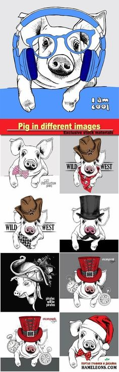 Забавная свинья в шляпе, в цилиндре, в колпаке Санты, с трубкой, с бабочкой - векторные иллюстрации | Pig
