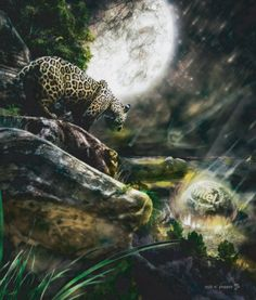 Digital art selected for the Daily Inspiration #1691