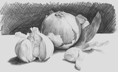 Drawings Easy how to draw onions and garlic in pencil - In this lesson we will expand on our shading knowledge by adding more textures to our shading work. Graphite Drawings, Pencil Art Drawings, Bird Drawings, Realistic Drawings, Art Drawings Sketches, Easy Drawings, Drawing Art, Drawing Ideas, Drawing Skills