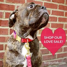 SHOP our #LOVE #SALE NOW ~ Feb 10th! Use these promo codes: $25+ Save 15% w/code: LOVE15 $50+ Save 20% w/code: LOVE20 $75+ Save 30% w/code: LOVE30  FREE SHIPPING in the U.S. / $5 to #Canada!  #StrawberryRedPolkaDot #DogCollar #Leash #bonjourfido #shopsmall #handcrafted #handmade #madeinnewyork #nyc #brooklyn #bulldog #oldeenglishbulldogge #dogsofinstagram #dogsofnyc #dogsofnewyork #dogsofbrooklyn #dogsoftoronto #dogsofvancouver #instadog #instawoof #weeklyfluff #ilovemydog  #luxe #cute…