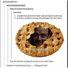 Sheppard's pie... This disturbed me... xD