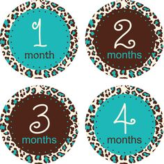 Monthly Baby Stickers Baby Girl Stickers by LittleLillyBugDesign, $9.00