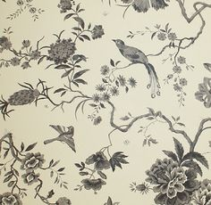 Pillemont Toile Wallpaper A floral and peacock print in charcoal on natural.