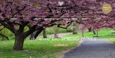 Terre/Nature Sakura Printemps Japon Chemin Parc Cherry Blossom Cherry Tree F… Terre/Nature Sakura Printemps Japon Chemin Parc Cherry Blossom Cherry Tree Fond d'écran Cherry Blossom Wallpaper, Cherry Blossom Tree, Blossom Trees, Cherry Tree, Blossom Garden, Cherry Hill, Spring Blossom, Natur Wallpaper, Frühling Wallpaper