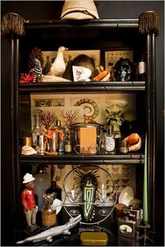 Cabinet of curiosities, from Hollister Hovey.